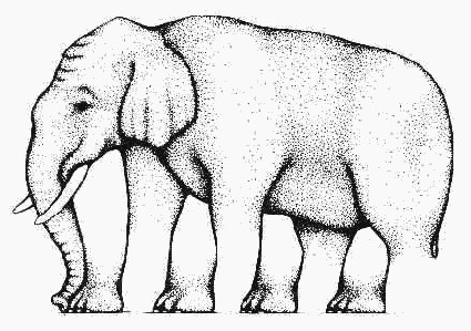 How many legs this elephant have