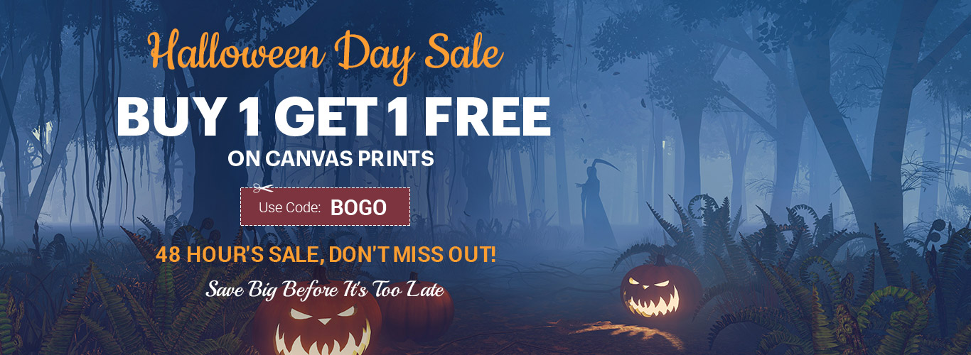 Buy 1 Get 1 Free ON Canvas Prints